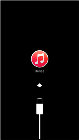 iphone-passcode-log-04